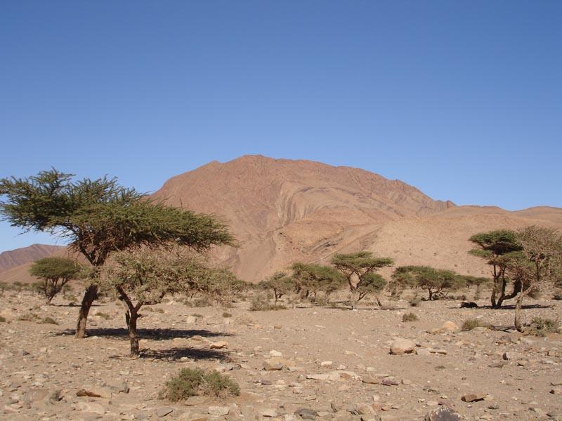 Marokko (12)